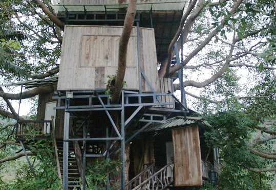 עץ בית חמישה בתים על עץ אחד בציאנג מאי, תאילנד   Tree House, Amazing, panoramic photograph, Doi Saket, Chiang Mai, Thailand. Samsung NX 2000, ZipLline Sky,