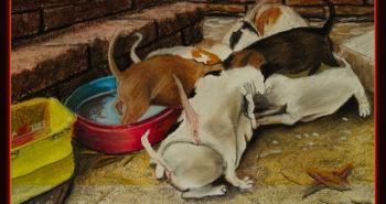 Painting Number 1 – גורי כלבים באטרף אכילה, סוכותאי, תאילנד. – Puppets in crazed frenzy feeding, Sukothai, Thailand.