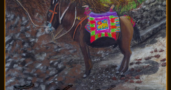 Painting Number 4 – חמור הדור כחבר כנסת, לליבלה, אתיופיה. – Decorated Royal Donkey, Like our MPs, Lalibella, Ethiopia.