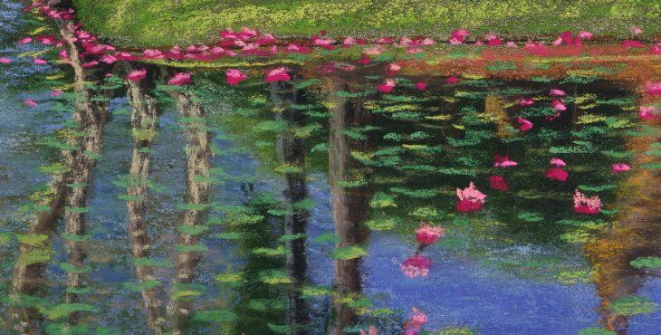 Bended Moat, Water lilys and reflections, Sukothai, Thailand.  3 Aug 2018 מואט פינתי עם השתקפויות, ופרחי לוטוס, סוקותאי, תאילנד