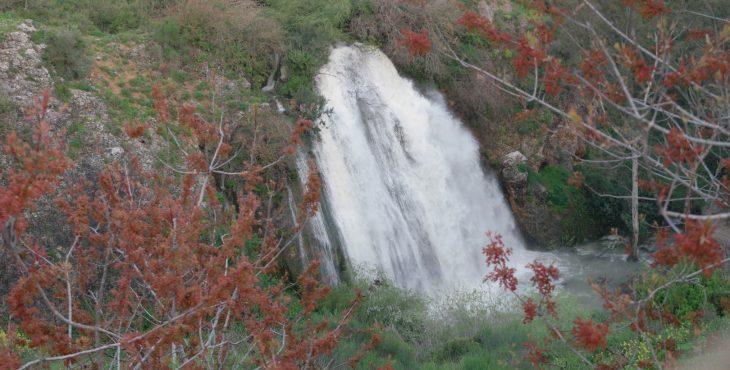 Water falls at the Upper Galilee and Golan Hights of Israel.   4  Apr 2019  מפלי המים בגליל העליון והגולן בשיא שפיעתם אחרי גשמי החורף
